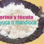Cómo Preparar Fécula o Harina de Tapioca